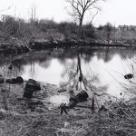 1993 - Sugar Mill Ponds Before